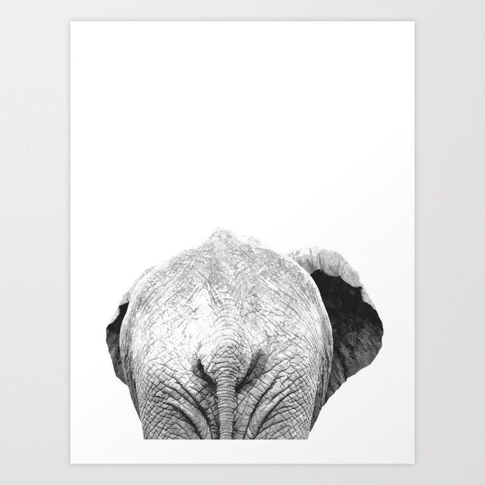 Black And White Elephant Animal Jungle Art Print By Alemi -7408
