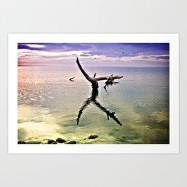 Salton Sea Art Print