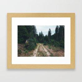 Combien de temps pour t'oublier? XII Framed Art Print