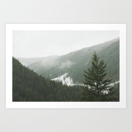 Valley of Trees Art Print