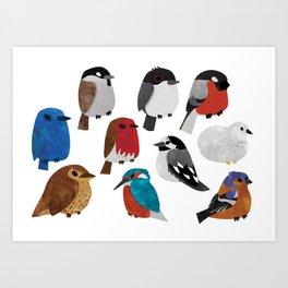 Bird Breeds Art Print