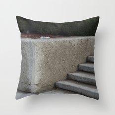 P/L Throw Pillow
