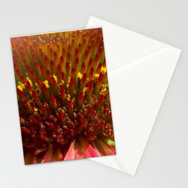 Cone flower colors Stationery Cards
