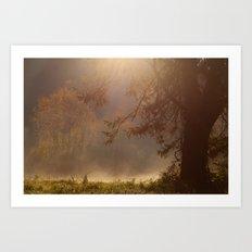 Peaceful Moments Art Print