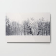 Into the Blizzard Metal Print