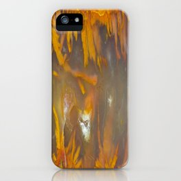 Mexican Flame Agate iPhone Case