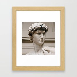 "Michelangelo ""David"" (head)(1) Framed Art Print"