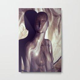 The Ordinary Woman Metal Print