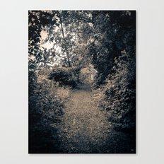 A Path Canvas Print