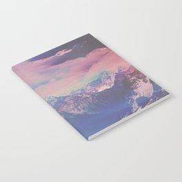 INFLUENCE Notebook
