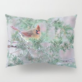 Pretty Female Cardinal Pillow Sham