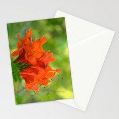 Exotic Ginger Flower Bignone 9125 Stationery Cards