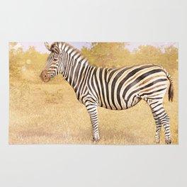 Zebra in the sunlight, Africa wildlife Rug