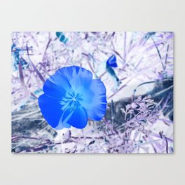 Remember When Canvas Print