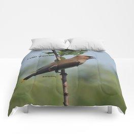 Cedar Waxwing at Hillsboro Pond Comforters