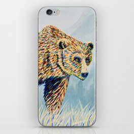 Colorful Bear in the Grass iPhone Skin
