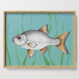 Common roach fish Serving Tray