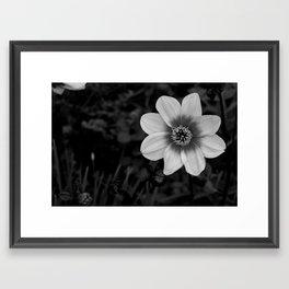 Shine in the Grey Framed Art Print