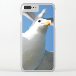 Flight buddies! Clear iPhone Case