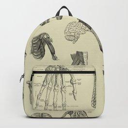 Vintage Anatomy Print Backpack