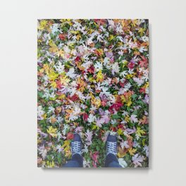 Fall - '17 Metal Print
