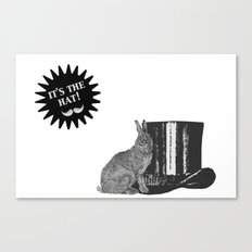 magic rabbit Canvas Print