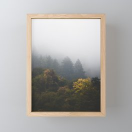 Autumn forest wrapped in fog Framed Mini Art Print