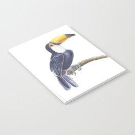 Toucan, tropical bird Notebook