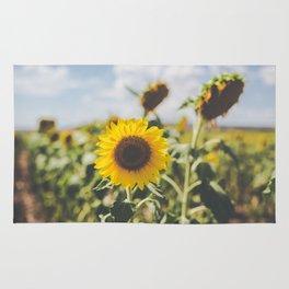 Allora   Sunflowers Rug