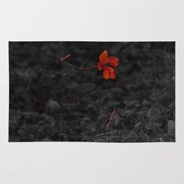 Red on Black Rug