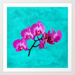 Orchid pink Art Print