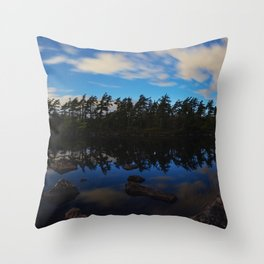 Peace During Chaos Throw Pillow