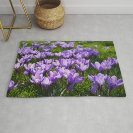 Purple Crocuses Rug