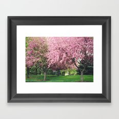 Spring Pink BlossomsTrees Nature Landscape - Pink Nature Wall Art Home Decor Framed Art Print