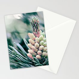 Pine branch Stationery Cards