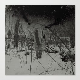 The sleepwalker no1 Canvas Print