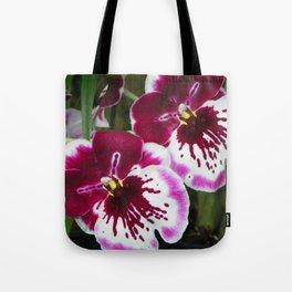 Ogling Orchids Tote Bag