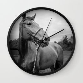 Horses of Instagram Wall Clock