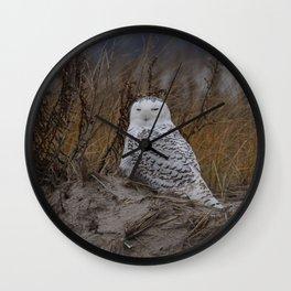 Snowy Owl on dune Wall Clock