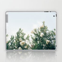 Neutral Spring Tones Laptop & iPad Skin