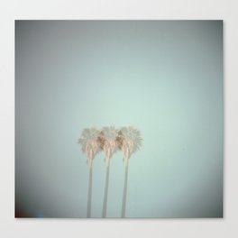 Triple Exposed Palm Trees Canvas Print