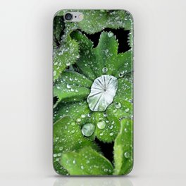 Greens  iPhone Skin