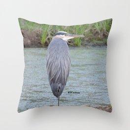 Blue Heron at Hillsboro Pond Throw Pillow