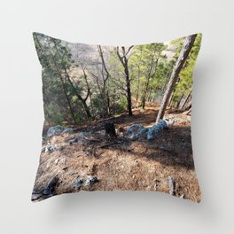 Climbing Up Sparrowhawk Mountain above the Illinois River,No. 5 of 8 Throw Pillow