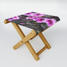 Beauty on The Rock Folding Stool