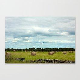 Hay Barrels Canvas Print
