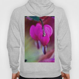 Confession Of Love Hoody