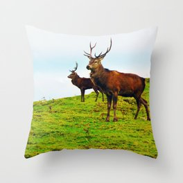 Stags on the hill Throw Pillow