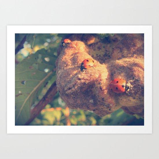 Three Ladybirds Art Print