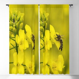 Busy bee Blackout Curtain